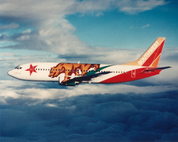 Southwest-Airlines-Specialty-Plane-California-One